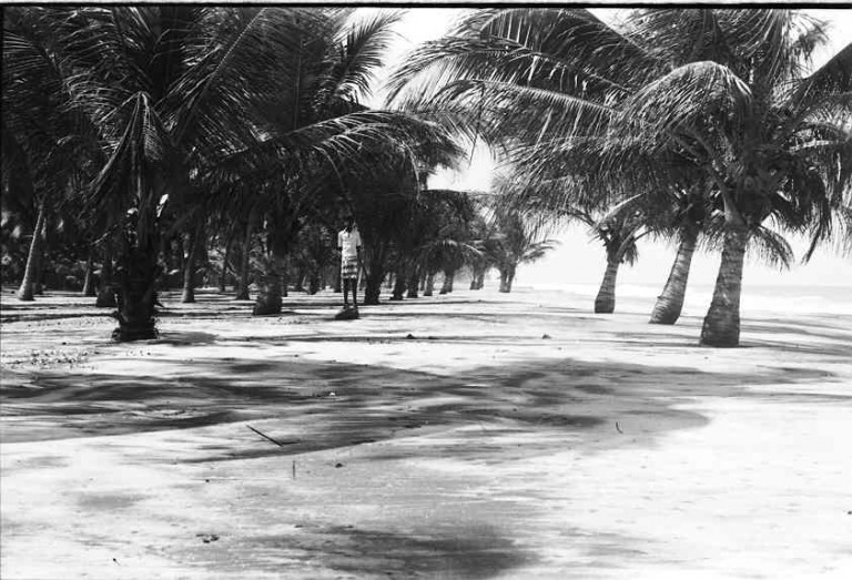 7th Onam storm surge, Alappad to north, 1981