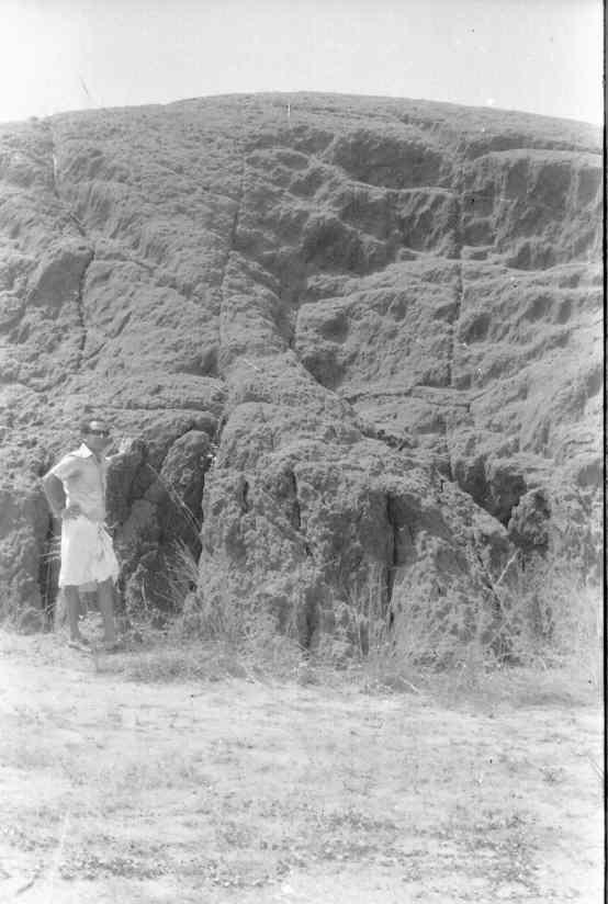 Look at the imposing dune- Lakshmanasarma in the frame.