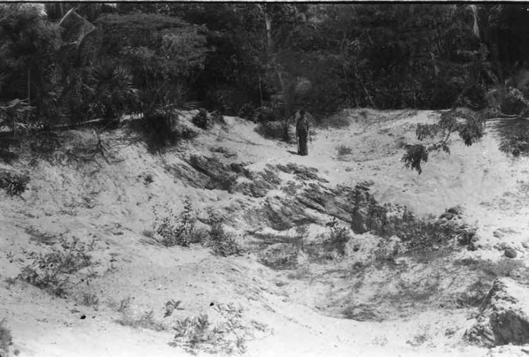 Shore face Planar beds, Mele Manakudi, Kovalam, Kanyaakumari (Mr.Radhakrishnan -field guide- in the background)