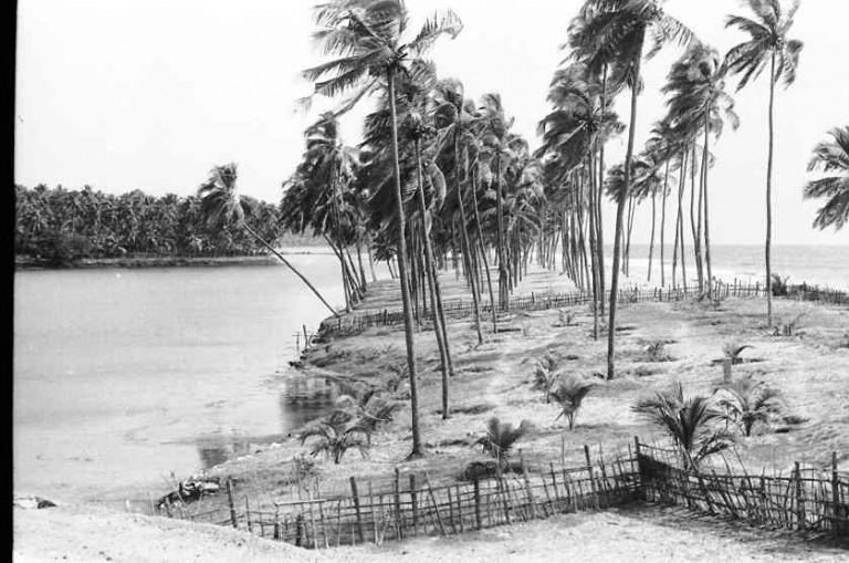 Nadayara Kayal - a northerly view of