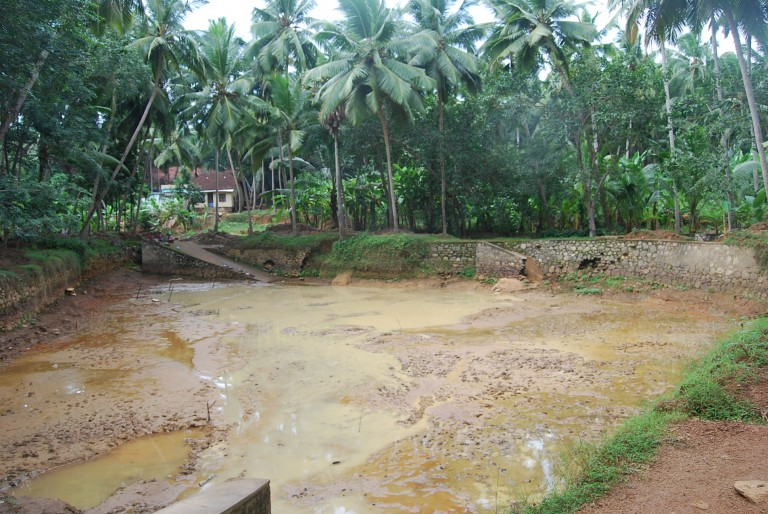 """Southerly view, Chanikulam, Cherukol, India. This pond was the one where Sri Bhuvanendran """"fooled' the older compatriots by quickly jumping into deeper waters."""