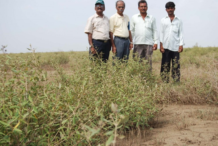 Mr. Ravindran and Vyas with natives- members of the GP.