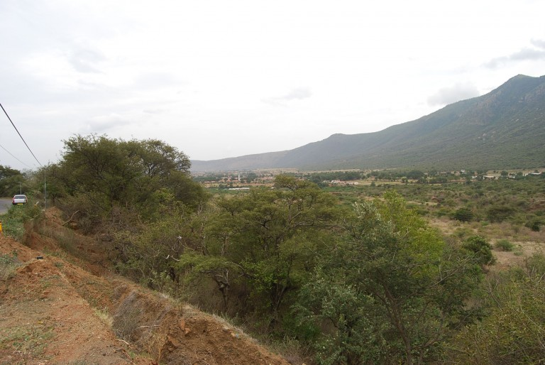 This valley is nearly arid. Vegetation is mostly tall grass and shrubs.