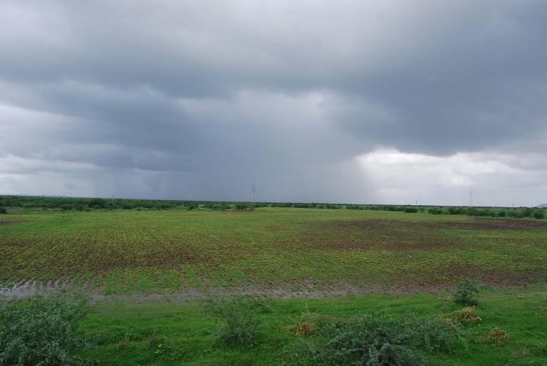 A developing rain storm