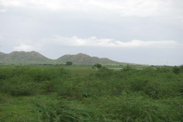 These hills are only exception to otherwise the plain land in the western Gujarat