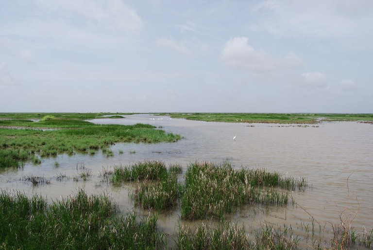 Flooded tidal channel.