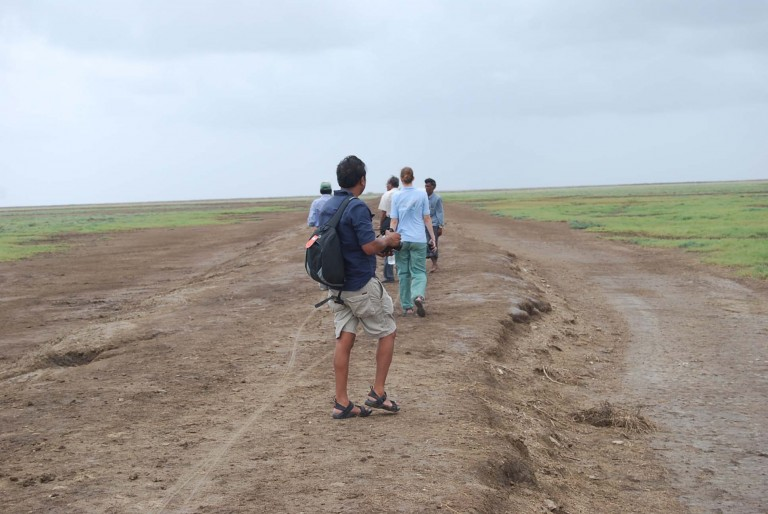 Walking down the dike is a thrill on an overcast day.