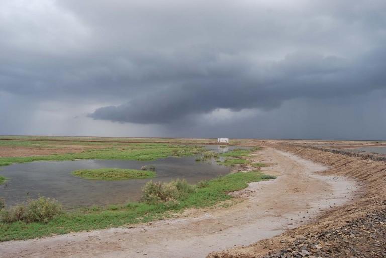 This long dike keeps the tidal flood waters at bay.