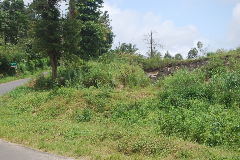 Look at the set back between the road and quarry. All norms of quarrying stand violated