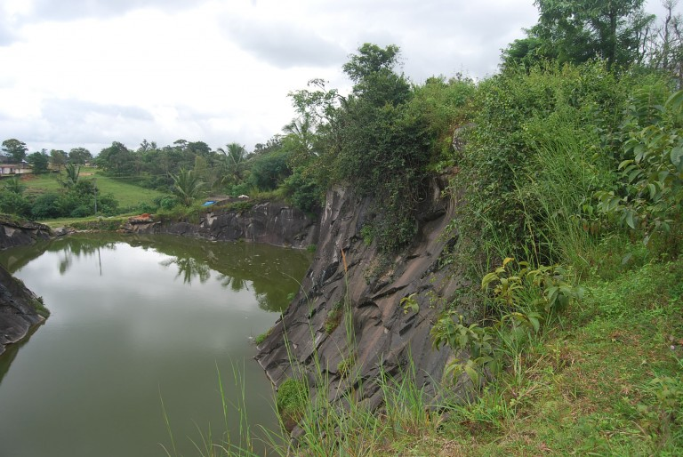 Another view of the pond.