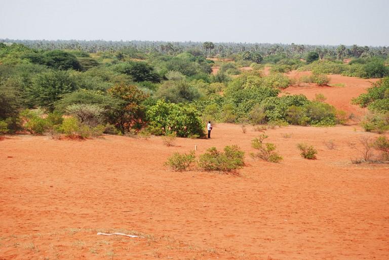 Kudiramoli Teri - a swale between the ridges in the mid ground.