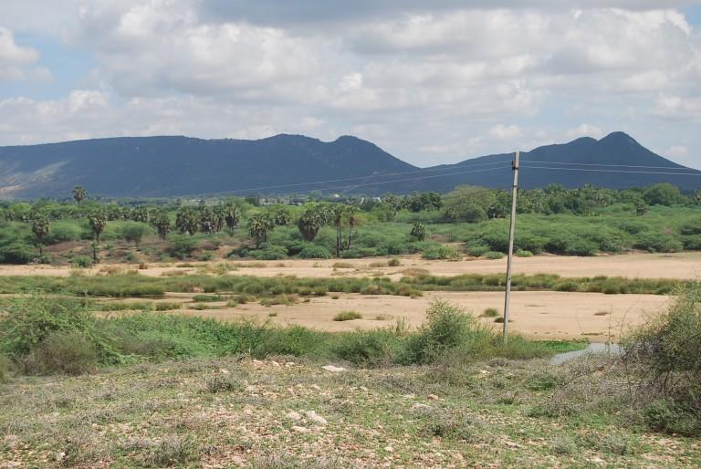 Thamirabarani in foreground