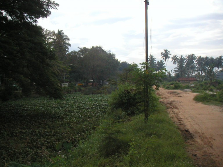 A trip to Trivandrum suburbia- On your left is the intracoastal water way,