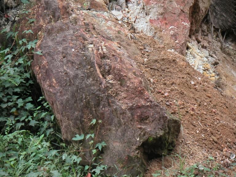 Fallen block of cross bedded grit, same area