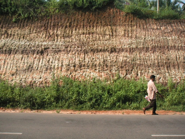 Tertiary warkallis exposed on a road cut on the rod to Kovalam, west side of rd
