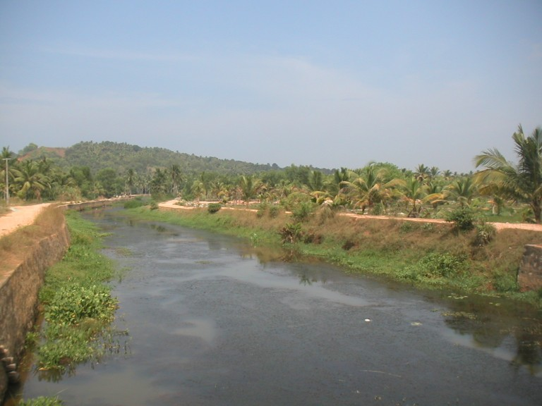 THRIVIKRAMJI'S LENS ON A TOUR OF VELLAYANI KAYAL - KANNALICHAL ON A CLEAR MID DAY -VIEW UPSTREAM