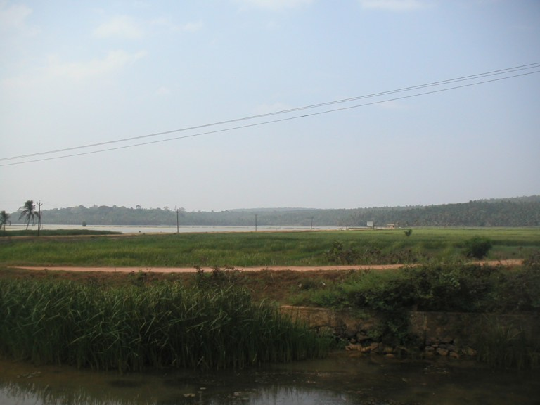 A VIEW OF KAYAL FROM THE LEFT EMBANKMENT OF KANNALICHAL