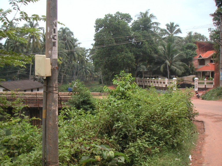 The exposure is 500 m before Madhupalam across the kANNALICHAL originating from the Vellayani kayal