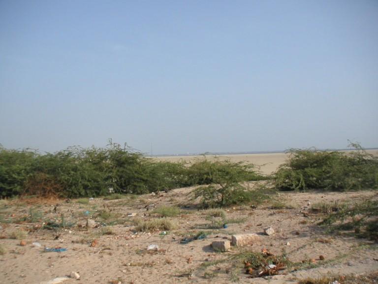 Barren backshore, Dhanushkodi