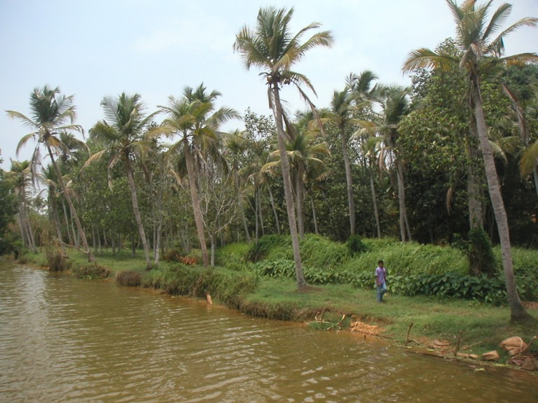 ENCROACHING THE SHALLOW WATERS OF KAYAL IS AN AGEOLD PASSION