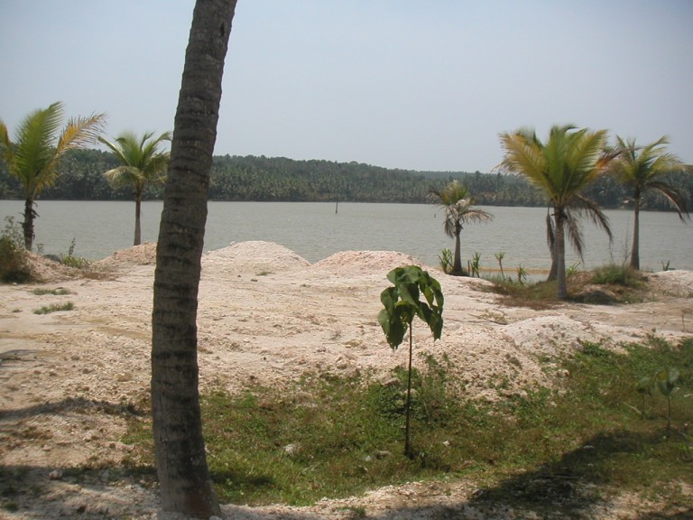 "SAMPLE OF ""ILLEGAL"" RECLAMATION OF KAYAL PROPERTY BY THE POWERFULL AND INFLUENTIAL"