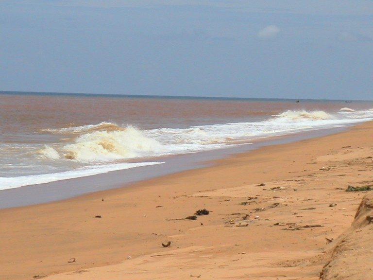 Polluted-Brownish coastal waters..